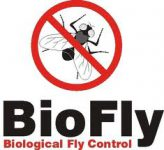 Biofly logo with fly