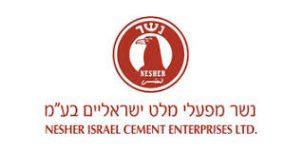 Nesher logo